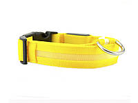 Светящийся ошейник для собак Ширина: 2.5 см, длина: 40-48 см, диапазон регулировки: 8 см (размер М) Жёлтый