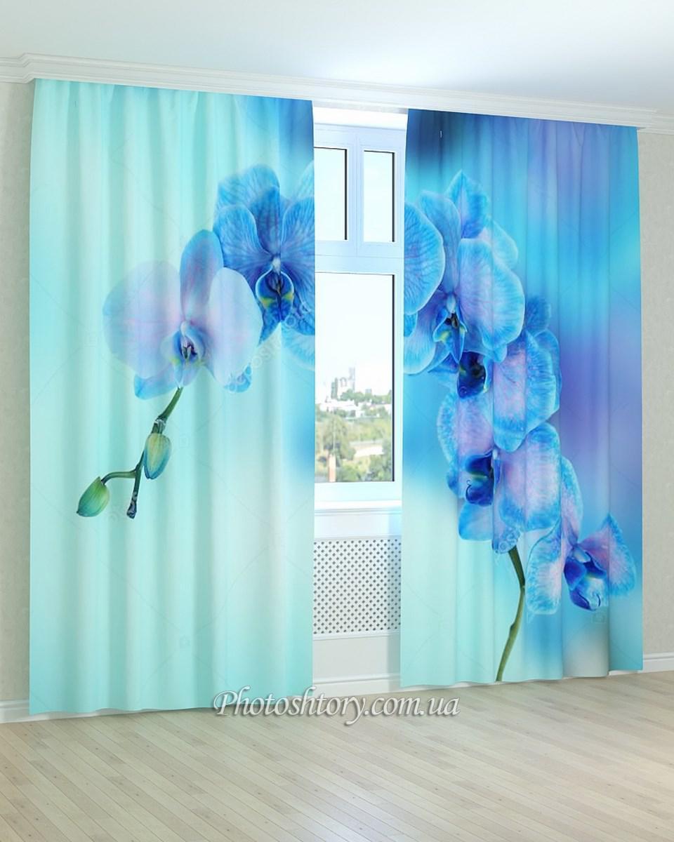 Фотошторы бело-голубая орхидея