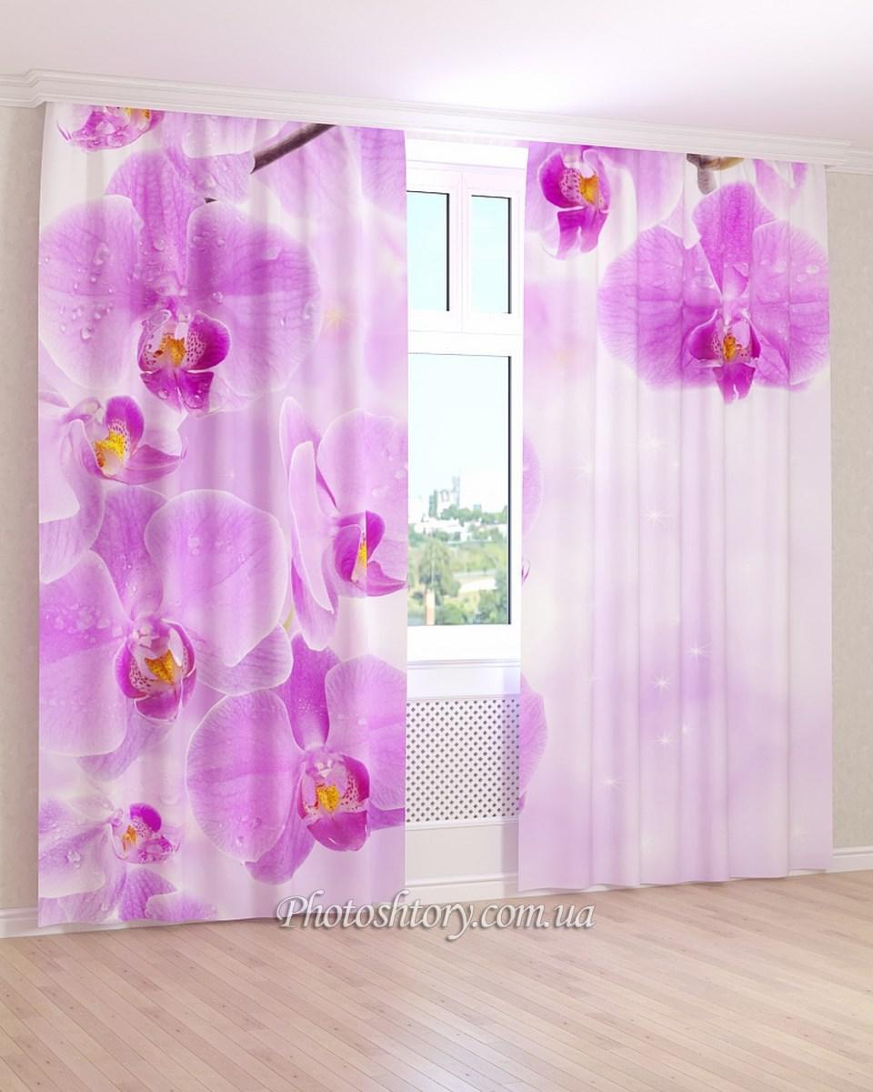 Фотошторы сиреневая орхидея в каплях