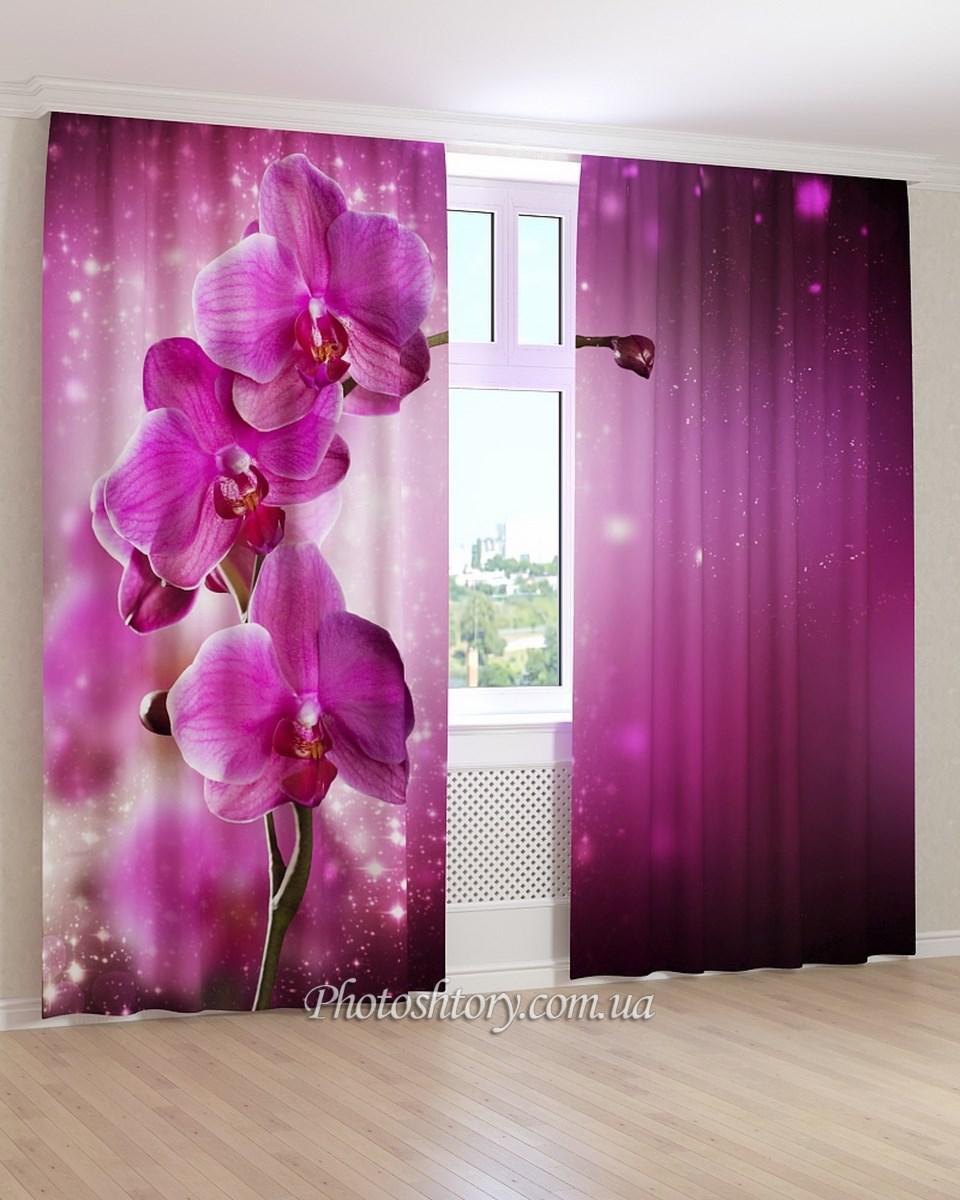 Фотошторы орхидея на фиолетовом фоне