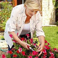 Секатор садовый Pruning Shears 9, 1001423, секатор садовый, секатор, секатор интернет магазин, секатор для обрезки, секатор для обрезки деревьев