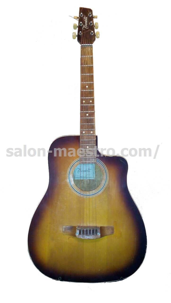 (01\0532) Гитара «Трембита» акустическая для уличного музыканта