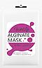 Альгинатная маска Сияние кожи с Жемчужной пудрой и Витамином Е  TM WildLife , 1000 г, фото 3