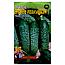 Семена Огурец Братец Иванушка большой пакет 4 г, фото 2