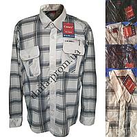 Мужская котоновая рубашка A46k ( длинный рукав) оптом со склада в Одессе
