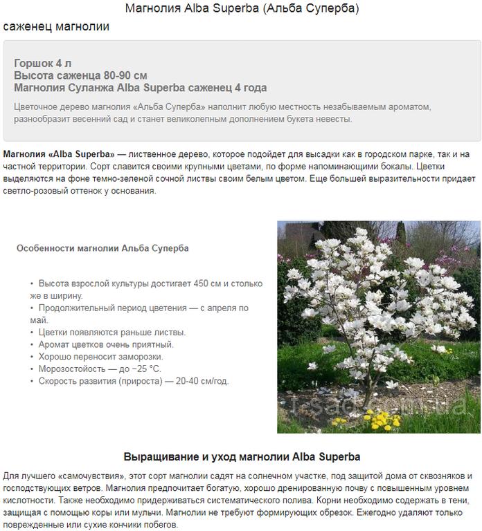 Примеры наполнения сайтов на Prom.ua 6