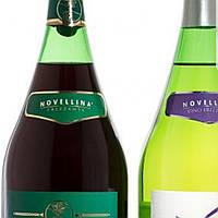 Вино игристое красное Ламбруско Novellina Lambrusco Emilia Amabile Rosso 1.5L.