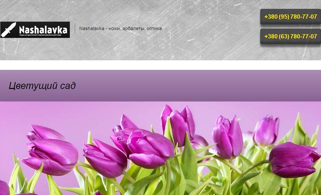 Примеры наполнения сайтов на Prom.ua