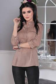 Блузы, рубашки, боди