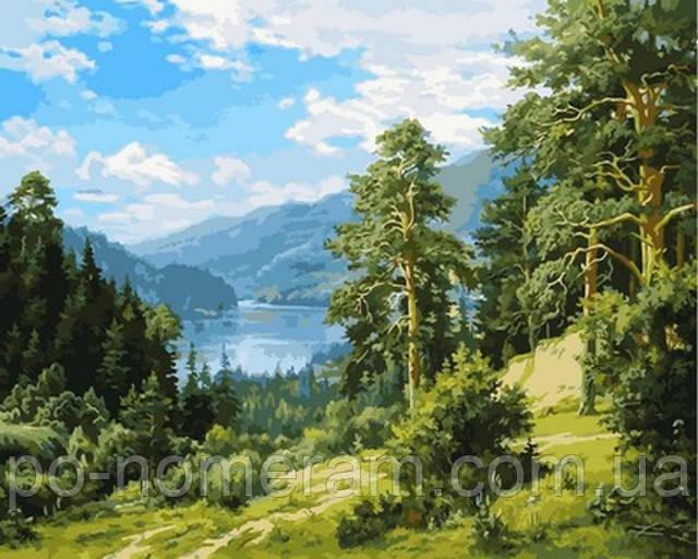 Картины по номера пейзажи
