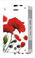 Газовые колонки проточные Dion JSD 10 дисплей (маки)