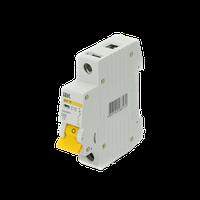 Автоматичний вимикач ВА 47- 29М 1ф 06А 4,5кА х-ка С IEK (Автоматичний вимикач ВА 47- 29М 1ф 06А 4,5кА х-ка С IEK)