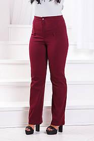 ДТ215 Брюки джинс в расцветках (размеры 50-56)