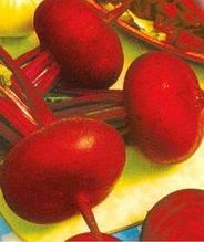 Семена свеклы Носовская плоская