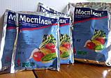 Инсектицид Моспилан 1кг, фото 2