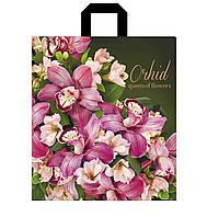 Пакет петлевая ручка 30*35 Орхидея