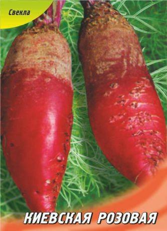 Семена свеклы кормовой Киевская розовая 50 г, фото 2