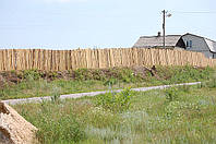 Уборка двора в Харькове и области, фото 1