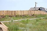 Очищення навколишнього середовища від сміття в Харкові і області, фото 5