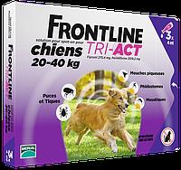 Merial FrontLine Tri-Act - капли для собак от 20 до 40кг ( 3пипетки)
