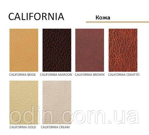 Кожа Калифорния (California) Prime Material