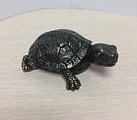 Статуэтка Veronese Черепашка 77141A1