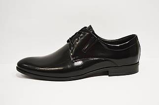 Туфли классические из натуральной кожи Tapi, фото 2