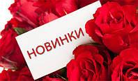 НОВИНКИ март