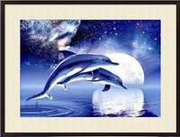 """Алмазная вышивка  """"Дельфины в ночном море"""""""