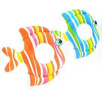 Круг 59223 (36шт) Тропические рыбки, 83-81см, 2цвета, 3-6лет,