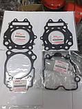Прокладка головки 400сс 99-06г Suzuki Burgman SkyWave 11141-15F00, фото 3