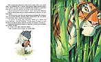 Книга джунглей. История Маугли. Р. Киплинг, фото 3