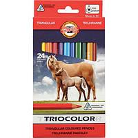"Карандаши цветные Koh-i-Noor Triocolor Jumbo ""Horses"" 3144 (24 цвета)"