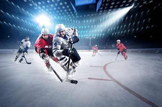 Сітки для хокею