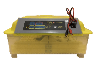 Инкубатор автоматический HHD 48 12В