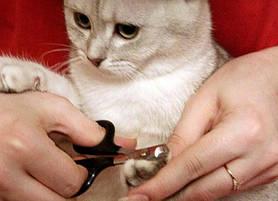 Trixie когтерезы для животных