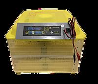 Инкубатор автоматический HHD 96 12В