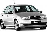 Авточехлы Skoda Fabia MК I 1999-2007 з/сп (раздельная) Nika, фото 10