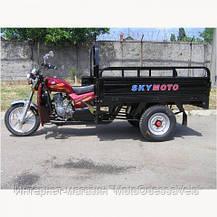 Трицикл Skymoto hercules 150 d, фото 3