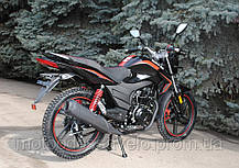 Мотоцикл Skymoto Bird X-6 150 (скаймото), фото 2