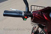 Электровелосипед Vega Lama Red 2018, фото 3