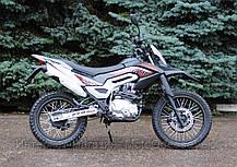 Skymoto Rider 250 black , фото 3