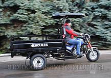 Трицикл Hercules Q1 -200 + козырек, фото 3