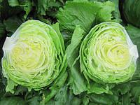 ГЛЕНДАНА  / GLENDANA – салат, Enza Zaden 5 000 семян