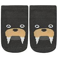 Детские антискользящие носки Морж Berni, фото 3