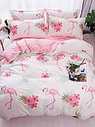 Постельное белье комплект   Большой фламинго (полуторный) Berni, фото 3