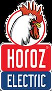 TM HOROZ ELECTRIC