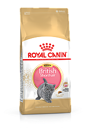 Сухой корм для кошек Royal Canin Kitten British Shorthair   400гр