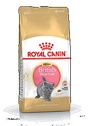 Сухой корм для кошек Royal Canin Kitten British Shorthair  2 кг