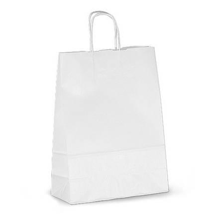Бумажный пакет с витыми ручками (305мм/170мм/445мм), фото 2